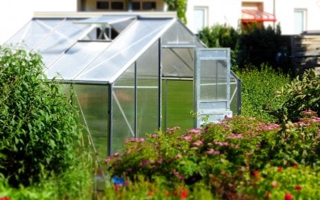 Greenhouse Plastic Shed Base Feature Image