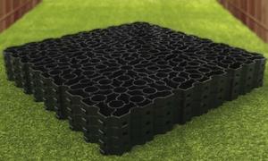 6x6 Base On Grass
