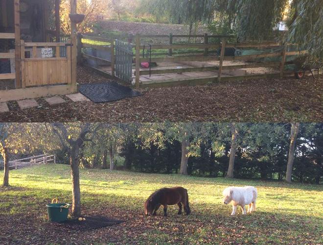 Rubber Grass Mats - Horse Recovery & Paddock