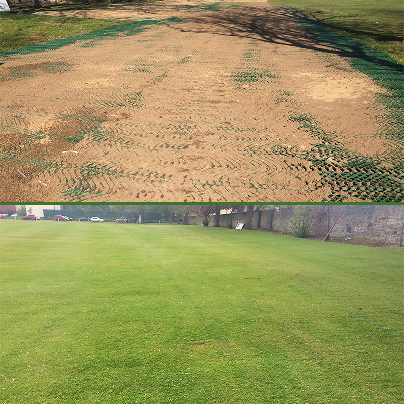 Grange Sports Club - TurfMesh Sand and Grown Grass