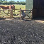 Rubber-Grass-Mats-in-Equestrian Yard--Featured Image