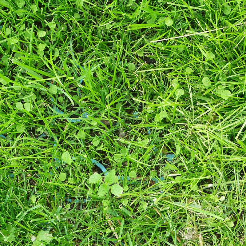 Green X-Grid Grass Driveway - Close-Up
