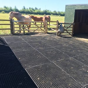 Equestrian-Rubber-Grass-Mats---Installed-In-A-Horse-Yard